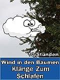 Wind in den Bäumen Klänge Zum Schlafen 10 Stunden [OV]
