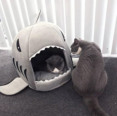 Tiburón diseños Caseta perro cama cesta perros gatos