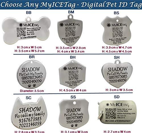 MyICETag Steel Personalized Engraved Plus Smart Dog Tag Digital Pet ID System