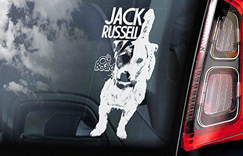 jack-russell-terrier-car-window-sticker-dog-sign-internal-reverse-printed-v03