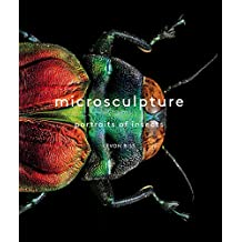 Microsculpture-portrait of insects