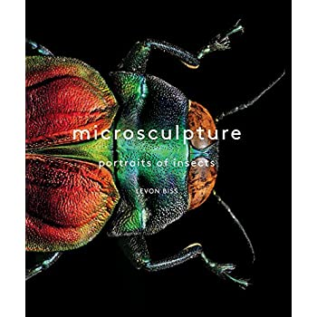 Microsculpture : Portraits of insects