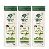 L'arbre vert Shampooing Détox pour Cheveux Gras 250 ml - Lot de 3