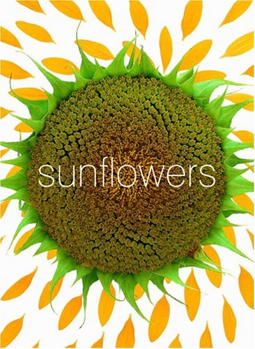 Sunflower Small Note Cards (Potter Style) -