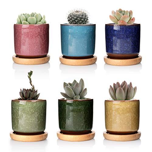 t4u 6.3cm ceramica crepa di ghiaccio zisha sollevato seriale succulento vaso/cactus vaso vaso di fiori/contenitore/piantatore pieno di colori con vassoi di bambù pacchetto di 6