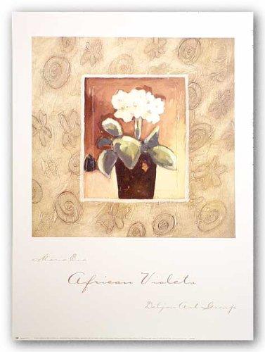 violetas-africanas-por-maria-eva-poster