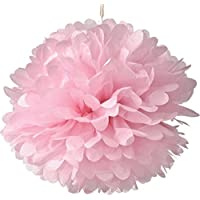 Set of 10 Pink Tissue Paper Pompoms Hanging Flower Balls Wedding Party Bridal Shower Nursery Decoration (10Inch) by dreammadestudio