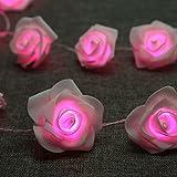 Denknova® 20er LED Rosen Lichterkette, batteriebetrieben, Pink, 2 Meter