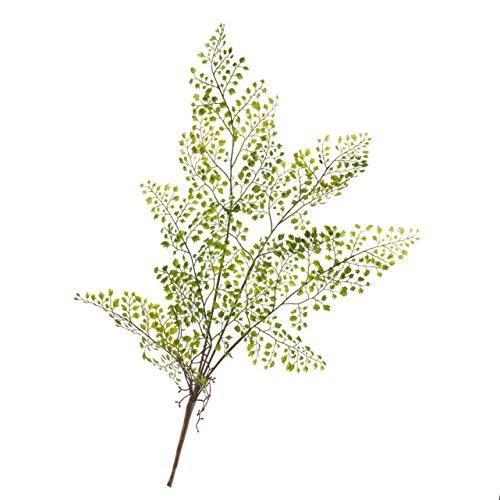 artplants Künstlicher Adiantum Farnzweig Robin mit Luftwurzeln, 5 Blätter, 50 cm, Ø 35 cm - Kunstzweig/Dekozweig