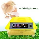Befied Incubadora automática de huevos digital 48 pcs Máquina de Eclosión 110V 80W Control de Temperatura 48.3 x 47 x 22.9cm