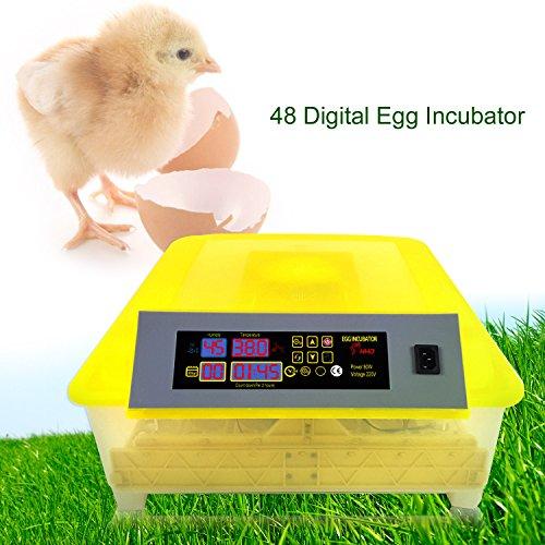 Flabor Inkubator 48 Eier Automatisch Digital Motorbrüter Incubator Brüter Brutmaschine Brutapparat mit LED Temperaturanzeige und Präzieser Temperaturfühler -