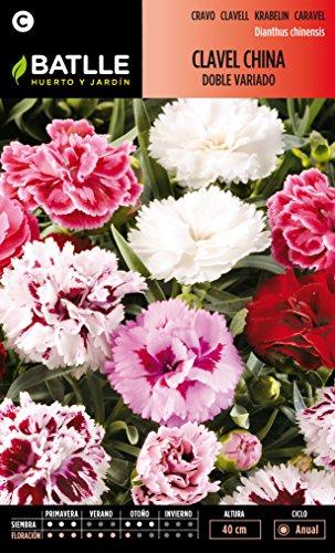 semillas-batlle-092452bols-clavel-china-doble-flor-grande-variado