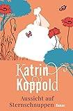 Aussicht auf Sternschnuppen (Roman) von Katrin Koppold