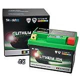 Skyrich HJTZ5S-FP batteria ricaricabile industriale Litio 12 V