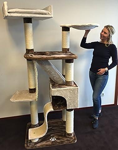 Kratzbaum große katze XXL Kilimandjaro Plus Creme Braun . Normal €299 ! Super Amazon Promo Sisalstämme 12cm Ø mit Holzfittingen Katzenkratzbaum für große Katzen. Europäische Qualität