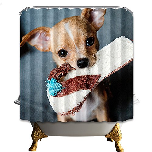 nymb Chihuahua Hund Bit Her Hausschuhe 175,3x 177,8cm Schimmelresistent Polyester Stoff Duschvorhang Set Fantastische Dekorationen Bad Vorhang -