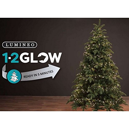 LUMINEO Led 1-2-Glow Tw Comp L Outd Weihnachten Illuminations