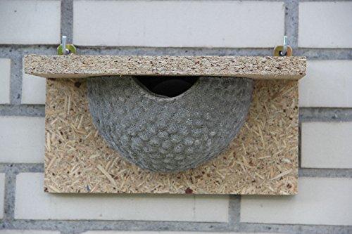 nid-dhirondelle-farine-protection-de-la-nature-professionnel-simples