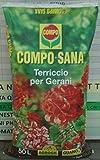 Compo Sana Terriccio Gerani Sacco Da 50 Lt immagine