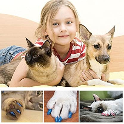 Qiao Niuniu New 20Pcs/Lot Colorful Soft Pet Dog Cats Kitten Paw Claws Control Nail Caps Cover #apowu522# (color: Red… 8