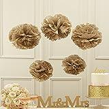 Ginger Ray Oro Metallico Carta velina Pom Pom Party & Wedding Decorations–Pastello Perfezione