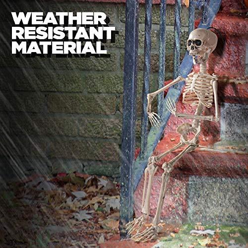Prextex.com 60cm bewegliches Halloween-Skelett - Ganzkörper-Halloween-Skelett mit voll beweglichen Gelenken für die Beste Halloween-Dekoration