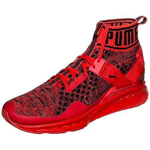Puma Ignite evoKNIT Sneaker Herren 7.0 UK - 40.5 EU