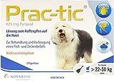 Elanco Deutschland GmbH Prac tic für grosse Hunde 22-50 kg Einzeldosispipe 3 stk