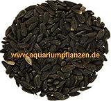 10 kg schwarze Sonnenblumenkerne, Vogelfutter