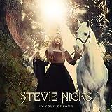 Songtexte von Stevie Nicks - In Your Dreams