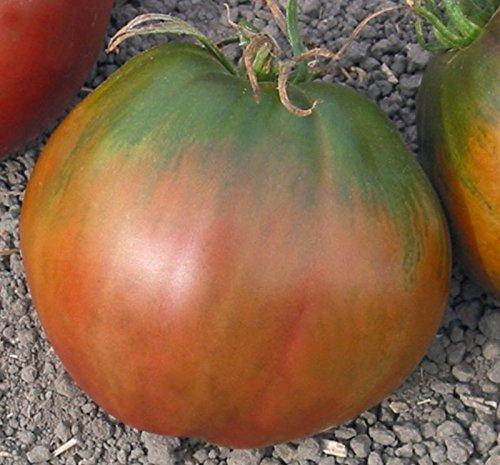 5 paquets de 25 graines de semences de tomate coeur noir de Brad