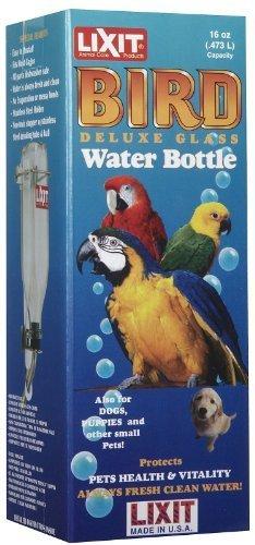 lixit Glass Bird Bottle - Medium - 16 oz by lixit