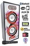 DYNASONIC altoparlante, impianto per karaoke, radio, ingresso USB e SD, batteria ricaricabile