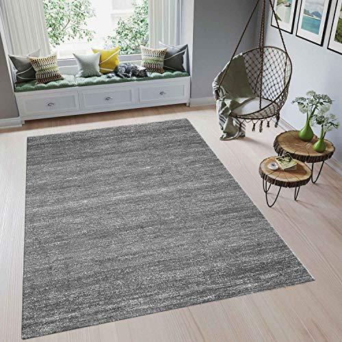 VIMODA Moderner Wohnzimmer Teppich Meliert Kurzflor, Oeko TEX Zertifiziert, Farbechtheit, Pflegeleicht in GRAU, Maße: 200x290 cm