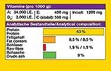 JBL NovoColor 30157 Alleinfutter für farbenprächtige Aquarienfische, Flocken 250 ml