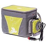 GNB Auto Tragbare Mini Kühlschrank Gefrierschrank Packs Mit Heizung Kleine Elektrische Kühlbox Tasche Für Auto 4L 12 V (48 Watt)