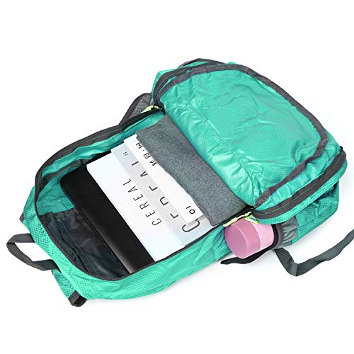CLOMANA® Waterproof Foldable Multi Color Nylon Backpack for Multi-Function Use (Pack of 1) Image 4