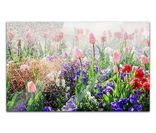 Acrylglasbilder 80x50cm Landschaft Blume Blumen Wiese bunt Acryl Bilder Acrylbild Acrylglas Wand Bild 14H401