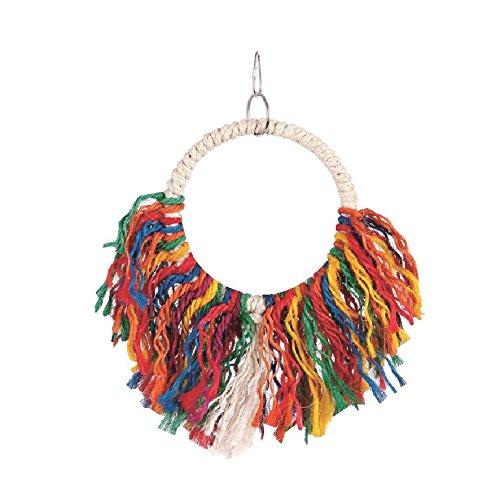hula-hoop-bird-jouet-pour-version-lissant-ses-plumes