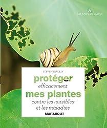 Protéger efficacement mes plantes contre les nuisibles et les maladies