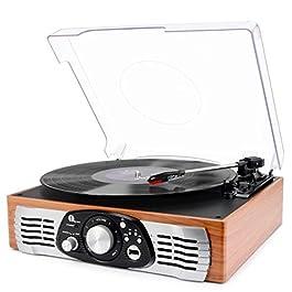 1 BY ONE Stereo Giradischi Cinghia a 3 velocità e Altoparlante Integrato, Lettore Multiplo con Conversione da Vinili a MP3, USB per Riproduzione MP3, Output RCA (Connettore Phono) (Legno)