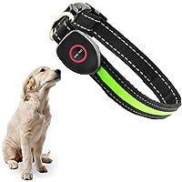 [Gesponsert]Hunde Halsband, OCHO8 Leuchtendes Halsbänder, LED Hunde Sicherheits Halsband, Hundeband USB Wiederaufladbar Leuchthalsband LED Blinkhalsband für Hunde,Welpen, Haustier (Größenverstellbar 33-50 cm)