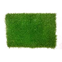 Artificial Grass 1×2 m 2 Pile Height 50mm, F 5005