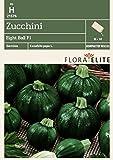 Zucchinisamen - Zucchini Eight Ball F1 von Flora Elite