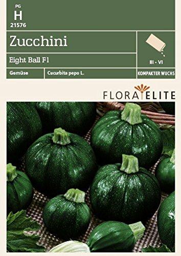 Zucchini Tüte Samen