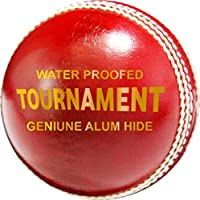 Zap Tournament Cricket - Bolas de Piel (4 Unidades)