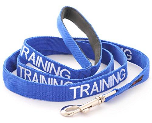Ausbildung (im Dienst/Bitte nicht stören) blau Warnung Hund farbcodierte Edles personalisierte 60cm 1.2m 1.8m 2m Leine Unfälle oder Zwischenfälle zu verhindern. Hund Preisgekrönte (120cm)