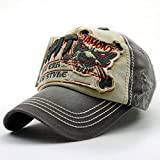 GADIEMKENSD Pure cotton Personality Vintage Embroidered Snapback Baseball Cap Patch Visor Trucker Hat Many Different Style (Tiger Gray·Apricot)