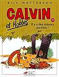 Calvin et Hobbes, tome 20 : Il y a des ...