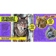 Il-primo-grande-libro-degli-animali-domestici